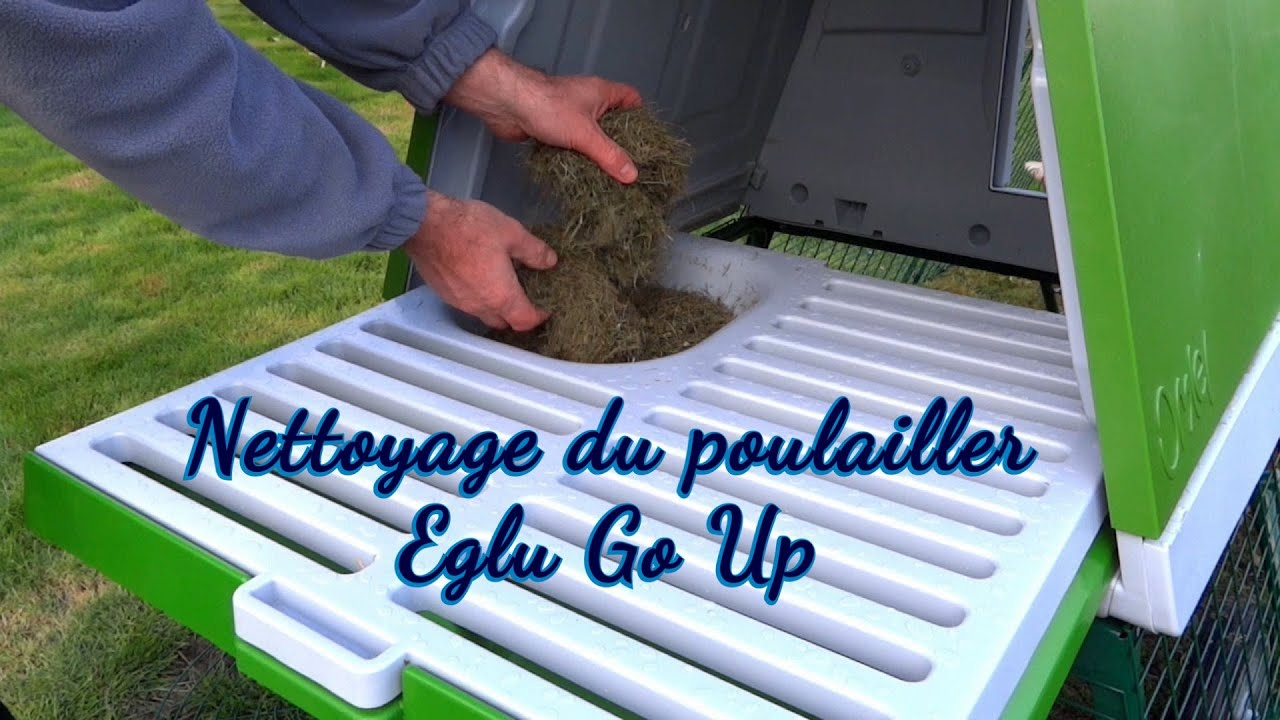 poulailler eglu go up