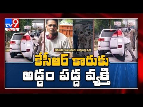 Telangana: Man Jumps In Front Of CM's Convoy, Taken Into Custody - TV9