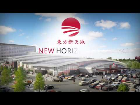 Calgary Retail Investment Opportunity: NEW HORIZON MALL