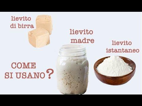 Lievito Madre Lievito Di Birra E Lievito Istantaneo Come