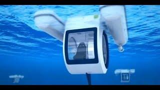 Катамаран-аквариум Penguin | Новинки Наука и техника