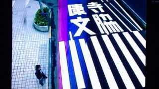 相棒2のオープニングです。 水谷豊 寺脇康文 直撮りなので クオリティに...