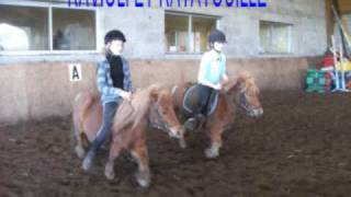 VLE ( val de loire equitation)