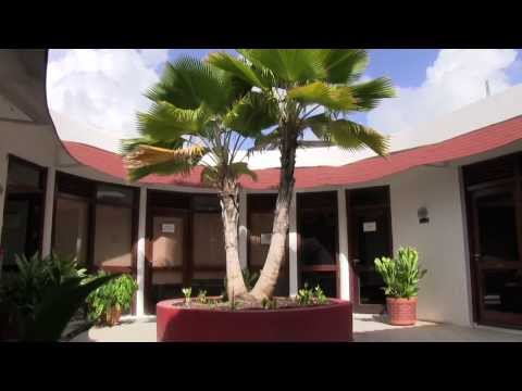 Avalon University - Study medicine at one of the top Caribbean Medical Schools