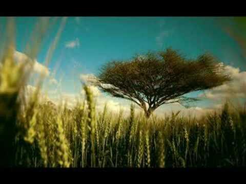 Terry Lee Brown Jr. - Our Rhythm (Matthias Tanzmann Mix)