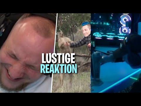 REAKTION auf TWITCH AM LIMIT 41 & 42 - KEIN KONZEPT   ELoTRiX Livestream Highlights