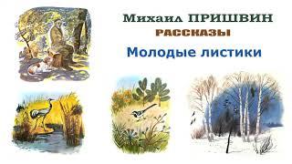 М.Пришвин AndquotМолодые листикиandquot - Рассказы Пришвина - Слушать