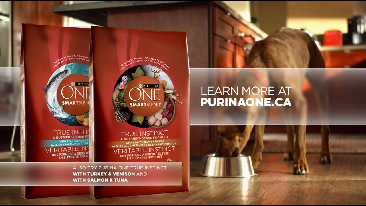 Introducing Purina One True Instinct Grain Free Dog Food Youtube