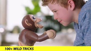 zoomer meet zoomer chimp tv commercial