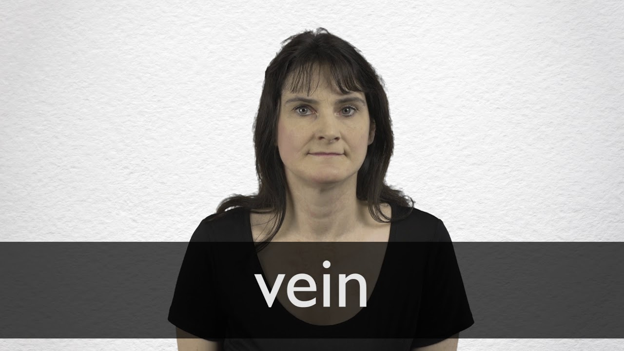 Vein definition and meaning | Collins English Dictionary