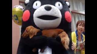 2013.6.9、びぷれす広場横で行われたロックの日防犯キャンペーンにて。...