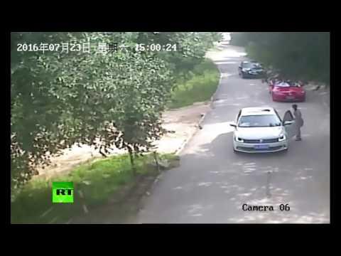 Tiger Mauls Woman to Death at Beijing Badaling Safari World