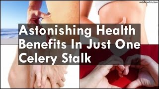Astonishing Health Benefits In Just One Celery Stalk