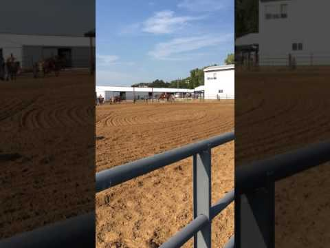 July 23, 2017 - Monroe County Fairgrounds, Waterloo IL Fair - Jocelyn & Hobo Barrel Race