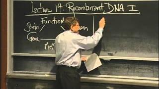 Overview of Recombinant DNA excerpt 1 MIT 7 01SC Fundamentals of Biology