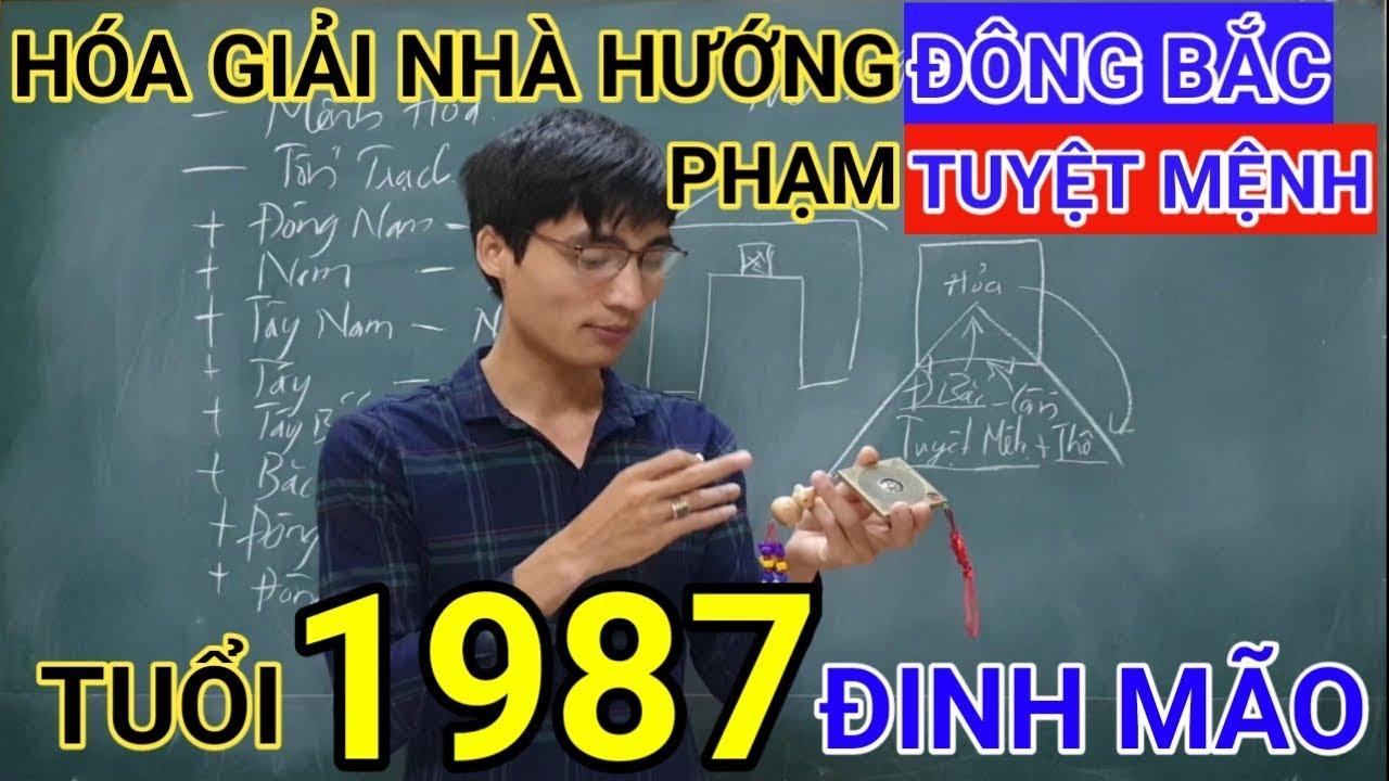 Tuổi Đinh Mão 1987 Nhà Hướng Đông Bắc | Hóa Giải Hướng Nhà Phạm Tuyệt Mệnh Cho Tuoi Dinh Mao 1987