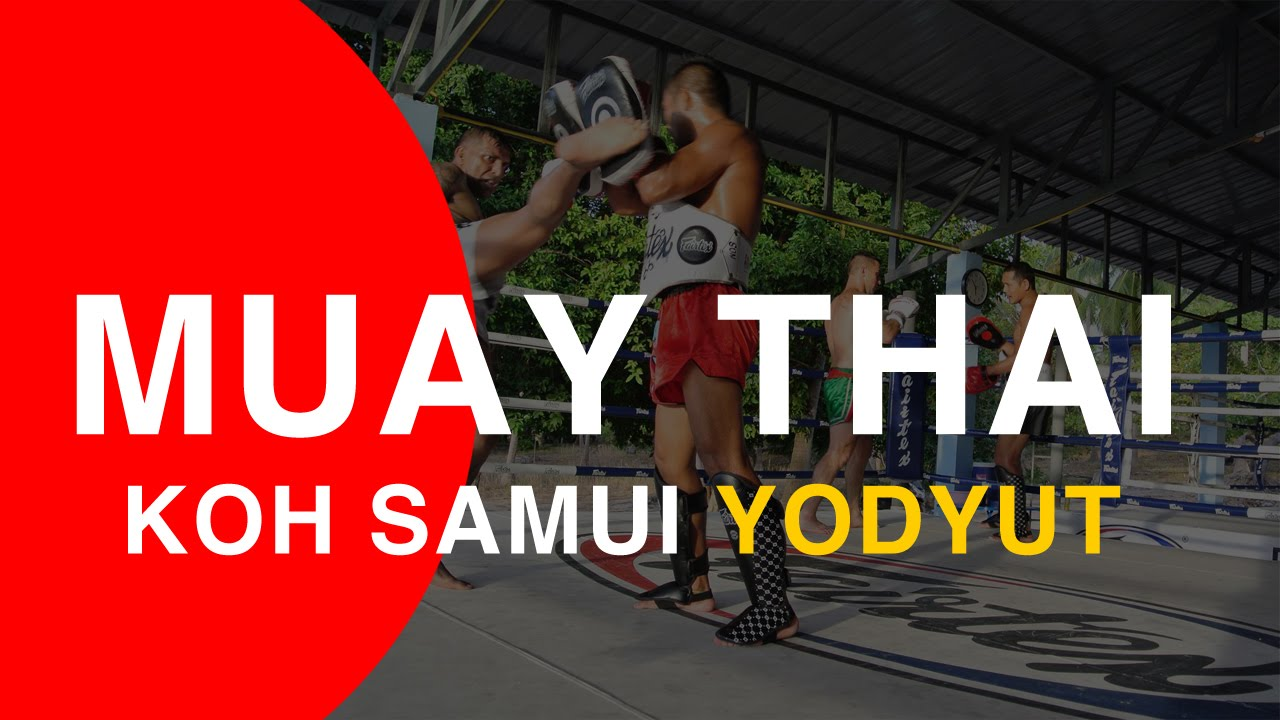 koh samui muay thai training