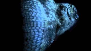 Mondkopf - Deadwood (Rising Doom) -UOP
