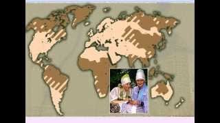 Население Земли презентация