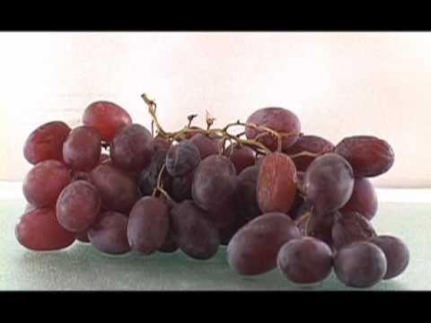Grapes to Raisins Time Lapse