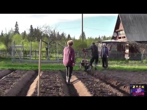 Видеозапись Как сделать грядки