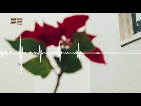Didirri - Raw Stuff