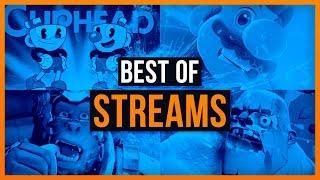 Best of Streams! - Schaut was ihr immer verpasst!