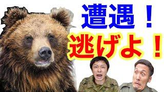 【対処法】〜もしも熊に遭遇した時の対処法をまとめてみた!〜元自衛隊芸人トッカグン