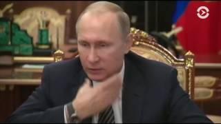 В Сирии объявлено о перемирии между властями и вооруженной оппозицией