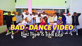 Blaiz Fayah & Tribal Kush - Bad (DANCE  CHOREOGRAPHY) Dmk Captures