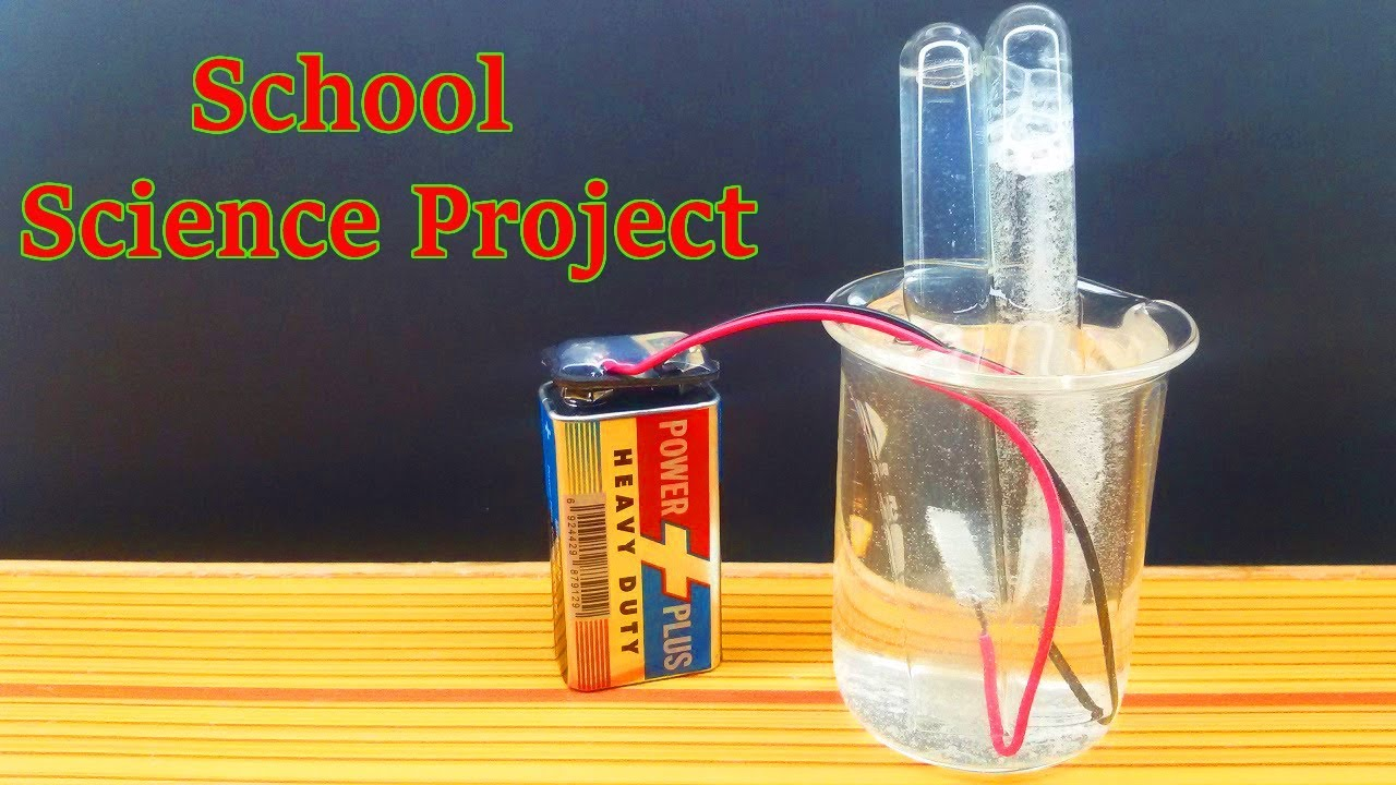 Science Fair Projects for 8th Grade | Home Science Projects & Scientific  Experiments