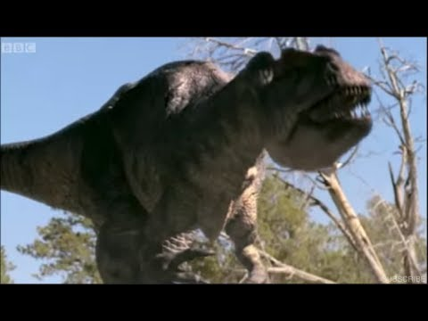 Allosaurus Mating Season (REMASTER)