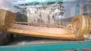 Bambu Ajaib Situs Gunung Padang Cianjur