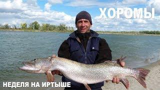 Неделя рыбалки в Иртышских Хоромах лето 2011 года