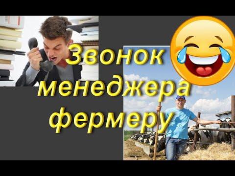 Разговор менеджера с фермером (прикол)