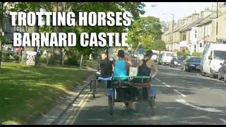 Gypsy Lads Trotting Horses At Barnard Castle - Camping Bowes Co Durham