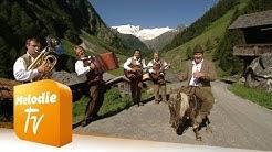Goldried Quintett - Der Paul und sein Gaul (Offizielles Musikvideo)