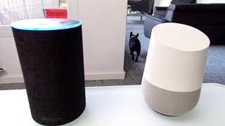 Test comparatif Google Home contre Amazon Echo en Francais