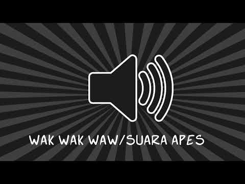 Wak Wak Waw | Sound Effects