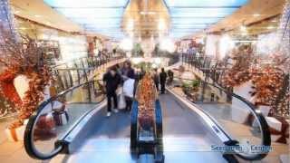 glänzende Weihnachtsstimmung im Seedamm-Center thumbnail