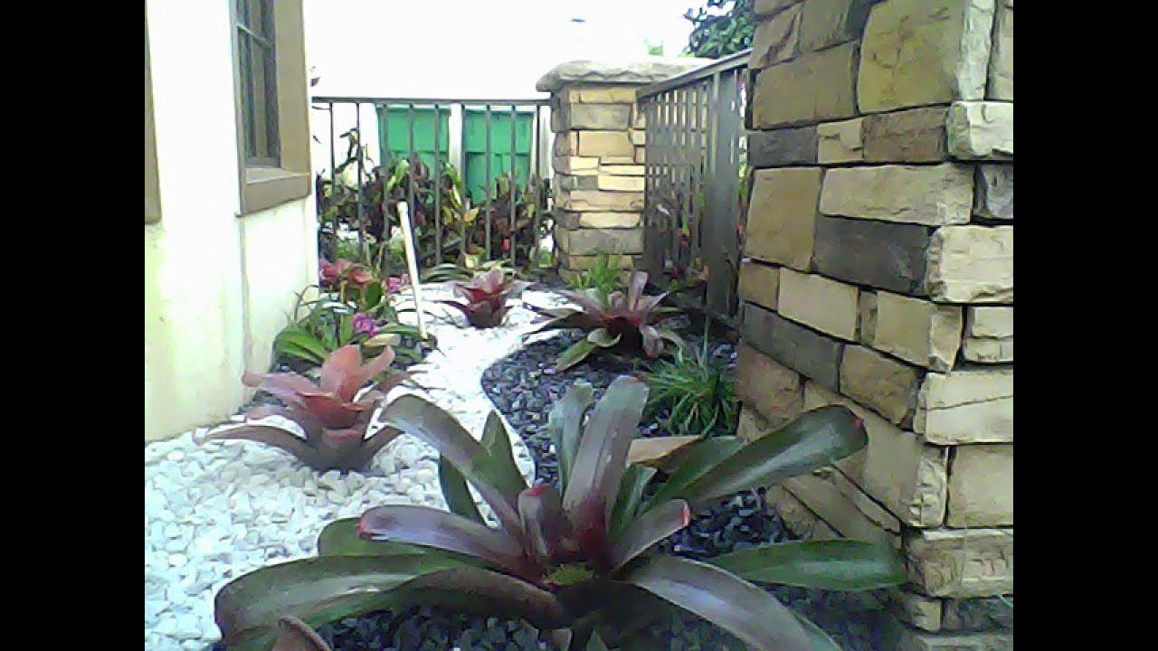 Jardineria Youtube