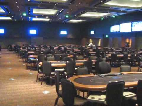 Poker casino arizona gambling age florida indian casinos