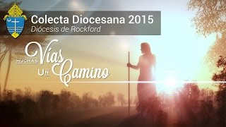 Colecta Diocesana 2015
