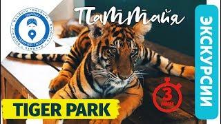 Экскурсии в Паттайе. Тигриный парк  лучший в Тайланде -  как добраться самостоятельно.