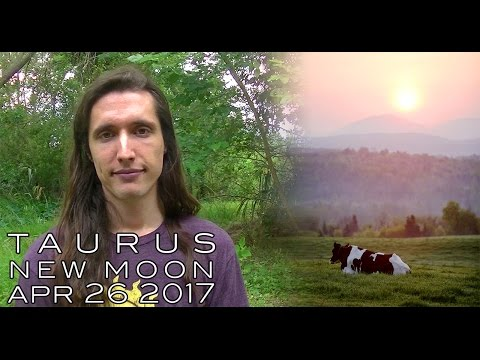 Astrology Forecast - Taurus New Moon April 24th - Pausing & Easing into Deep Healing