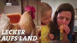 Das Oster-Vergnügen   SWR Lecker aufs Land