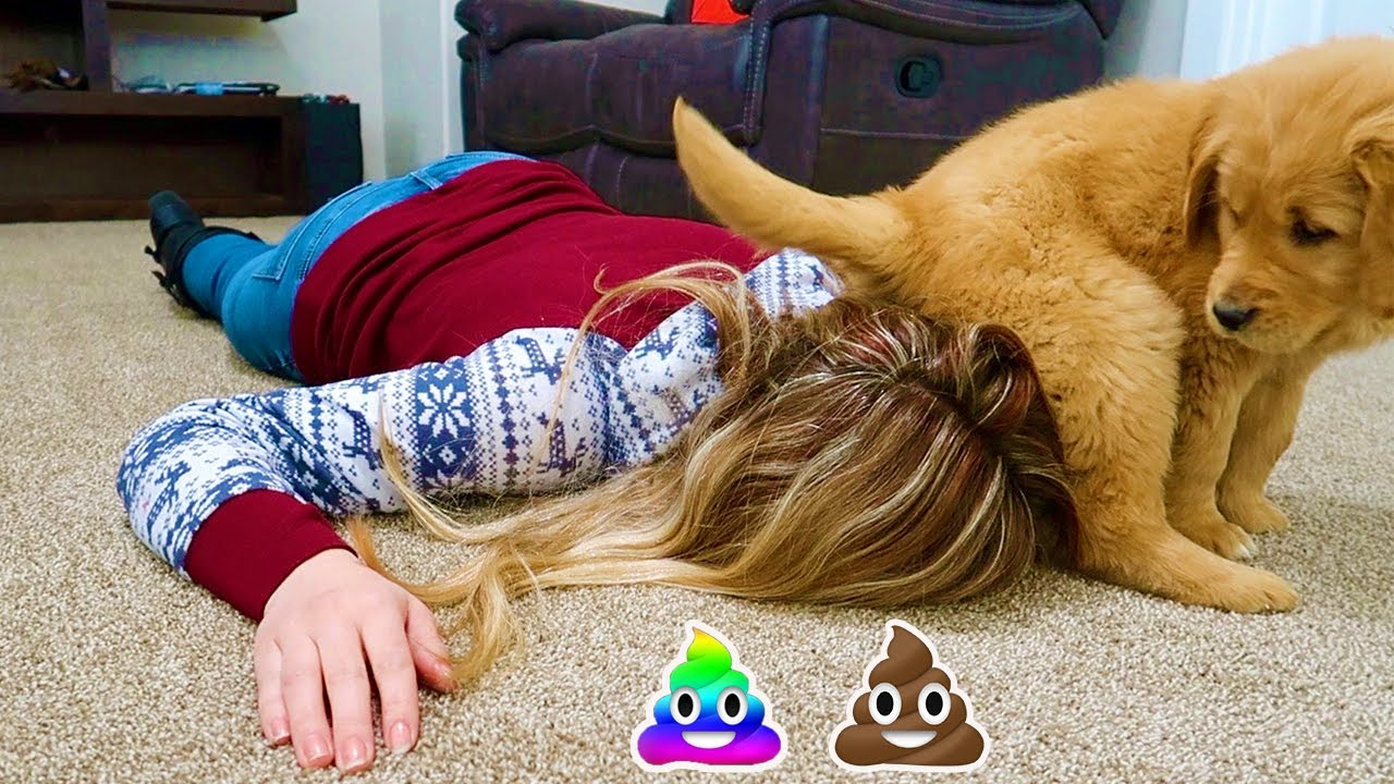 Download Faking My Death In Front of My Puppy! Summer's Funny Reaction