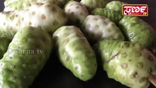 Noni juice Health beniffit in Kannada