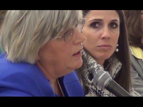 Representative Denise Garlick confirms one nurse to one patient is the legislative intent.