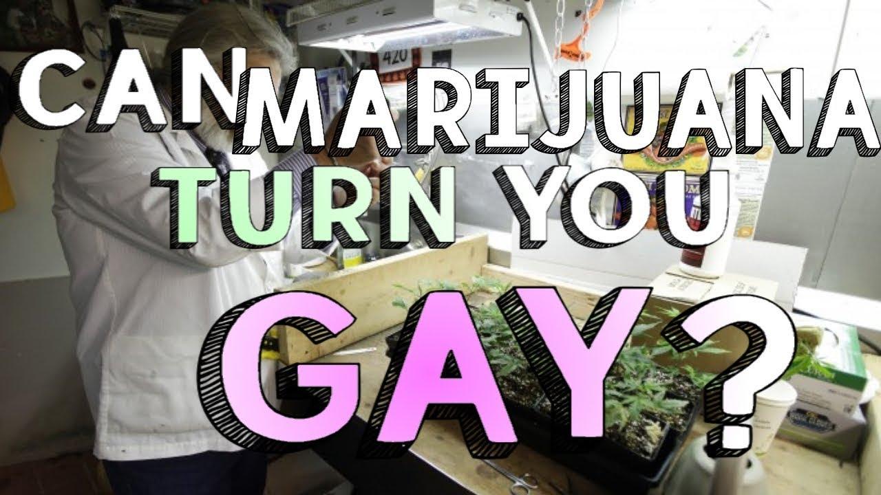 Gay pot smokers
